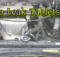 gm stop leak tablets review