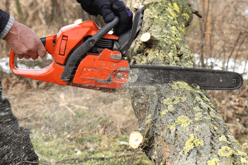 The 6 Best Husqvarna Chainsaws – Reviews & Buying Guide